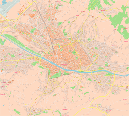 Vector map of Florence, Italy