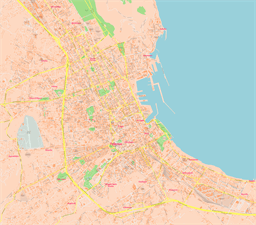 Vector map of Palermo (center), Italy